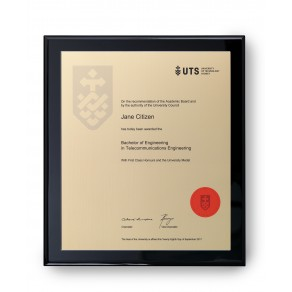 UTS Gold on Black Large Plaque