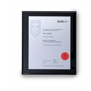 UTS Silver on Black Medium Plaque
