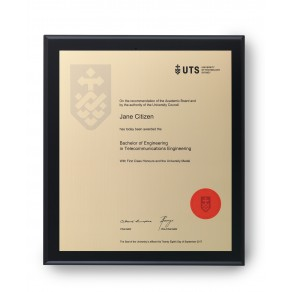 UTS Gold on Matt Black Large Plaque