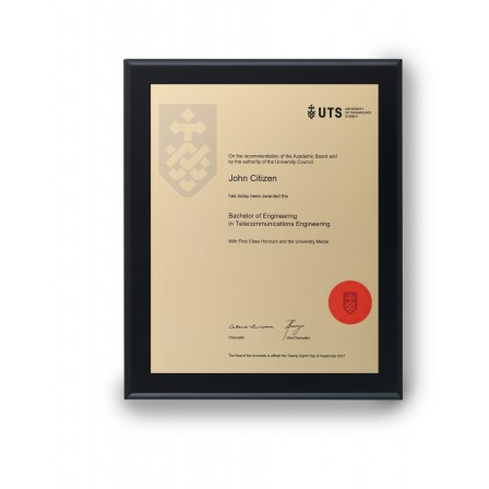 UTS Gold on Matt Black Medium Plaque