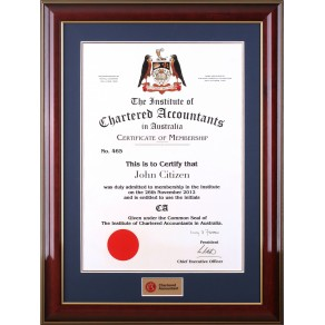 Chartered Accountants certificate frame