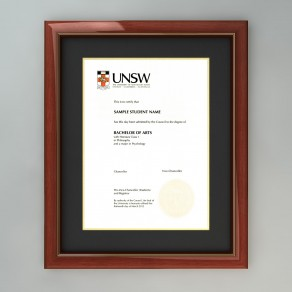 UNSW - Embassy